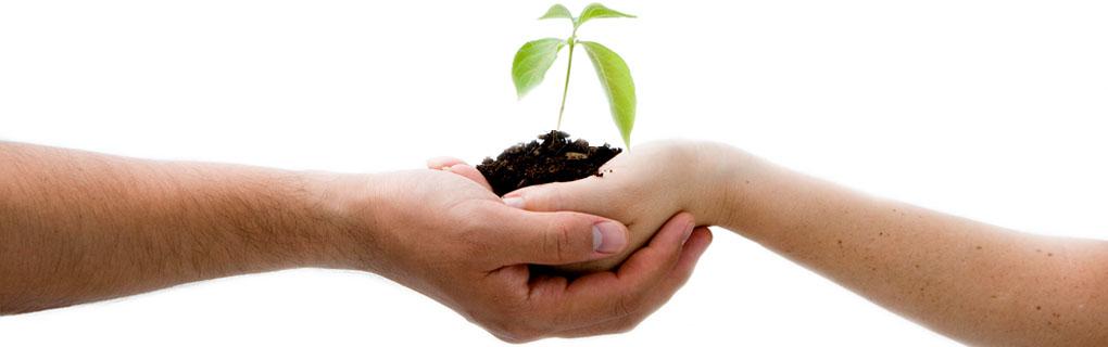 Mit Wertemanagement zu nachhaltigem Erfolg